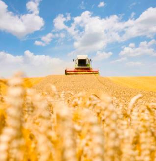 Machinisme agricole : le paradoxe français se poursuit !
